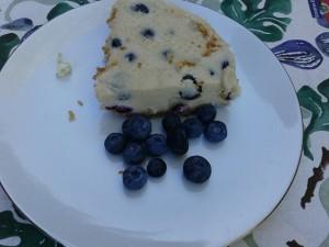 "Creamy Blueberry Cashew ""Cheesecake"""